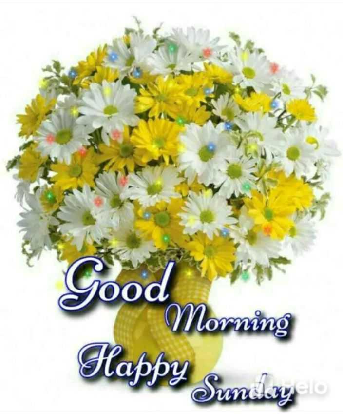 🌷 সুপ্ৰভাত - Good Morning Happy Sunily - ShareChat