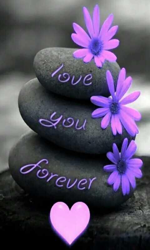 🌞 সুপ্ৰভাত - love you ? forever - ShareChat