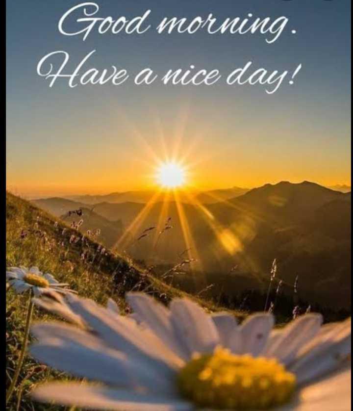 🌷 সুপ্ৰভাত - Good morning . Have a nice day ! - ShareChat