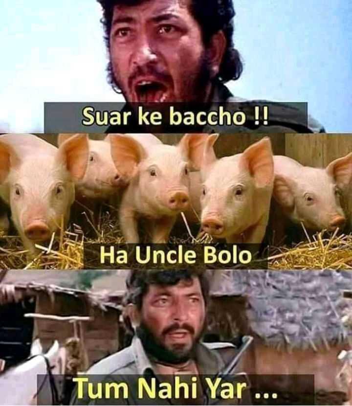 😁হাস্য কৌতুক - Suar ke baccho ! ! Ha Uncle Bolo Tum Nahi Yar - ShareChat
