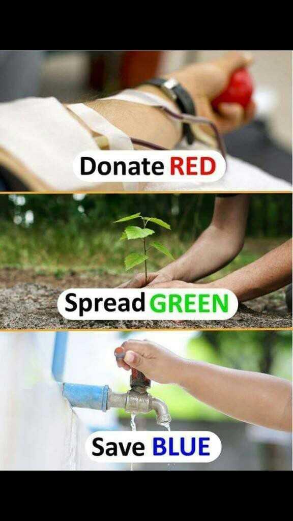 🎸ਅੰਤਰਰਾਸ਼ਟਰੀ ਸੰਗੀਤ ਦਿਵਸ 🥁 - Donate RED Spread GREEN Save BLUE - ShareChat