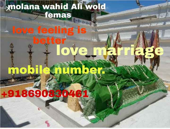 🏏 ਕ੍ਰਿਕਟ - molana wahid Ali Wold female better we feeling is + love marriage mobile number . + 9186908 0461 - ShareChat