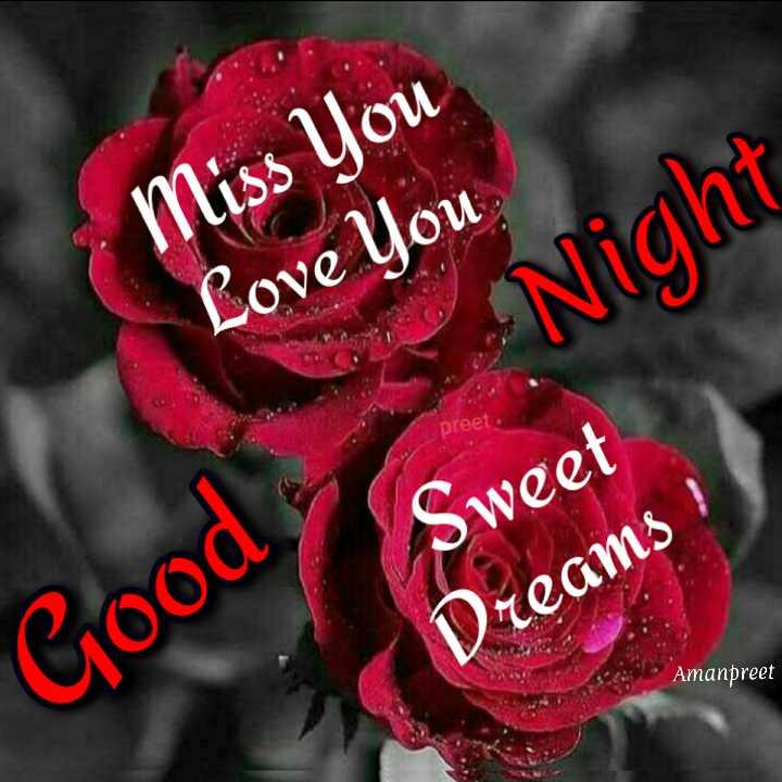 🌙  ਗੁੱਡ ਨਾਇਟ ਵੀਡੀਓ - Miss You Love You Night Sweet Dreams ! Amanpreet Good - ShareChat