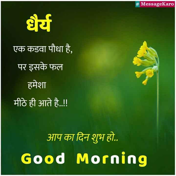 🌅 ਗੁੱਡ ਮੋਰਨਿੰਗ - # MessageKaro | धैर्य एक कडवा पौधा है , पर इसके फल हमेशा मीठे ही आते है . . ! ! आप का दिन शुभ हो . . Good Morning - ShareChat