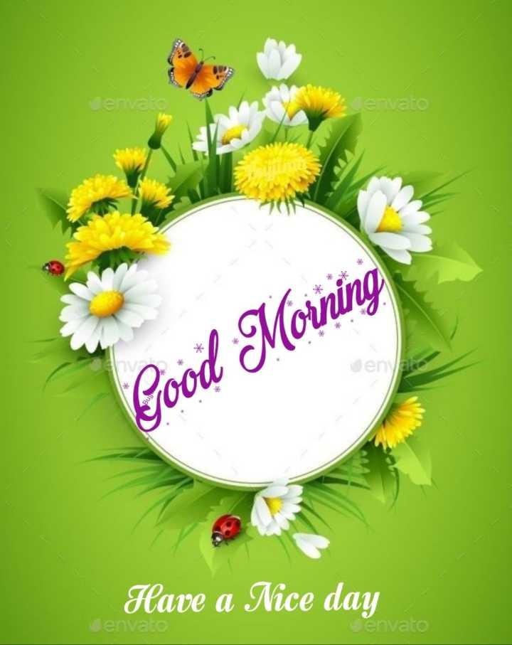 🌅 ਗੁੱਡ ਮੋਰਨਿੰਗ - en envato ene Good Morning Have a Nice day envato envato - ShareChat