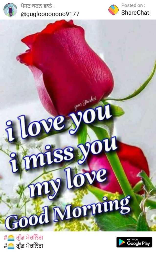 🌅 ਗੁੱਡ ਮੋਰਨਿੰਗ - ਪੋਸਟ ਕਰਨ ਵਾਲੇ : @ guglooooo0009177 Posted on : ShareChat year Pardesi i love you i miss you my love Good Morning GET IT ON # * dis Halódi # dis Hafodt Google Play - ShareChat