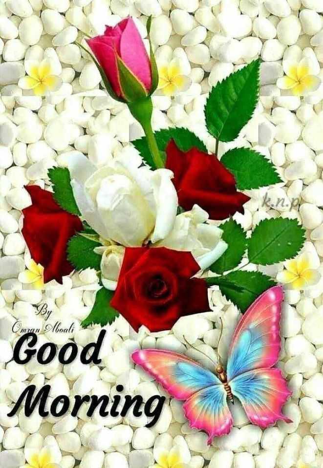 🌅 ਗੁੱਡ ਮੋਰਨਿੰਗ - Oman Anali Good Morning - ShareChat