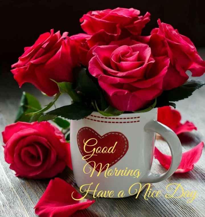 🌅 ਗੁੱਡ ਮੋਰਨਿੰਗ - Good Morning Have a nice - ShareChat