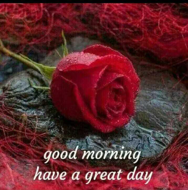 🌅 ਗੁੱਡ ਮੋਰਨਿੰਗ - good morning have a great day - ShareChat