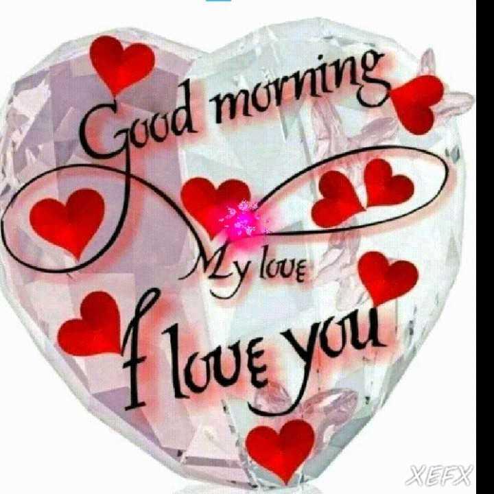 🌅 ਗੁੱਡ ਮੋਰਨਿੰਗ - Good morning My love Love you XEFX - ShareChat