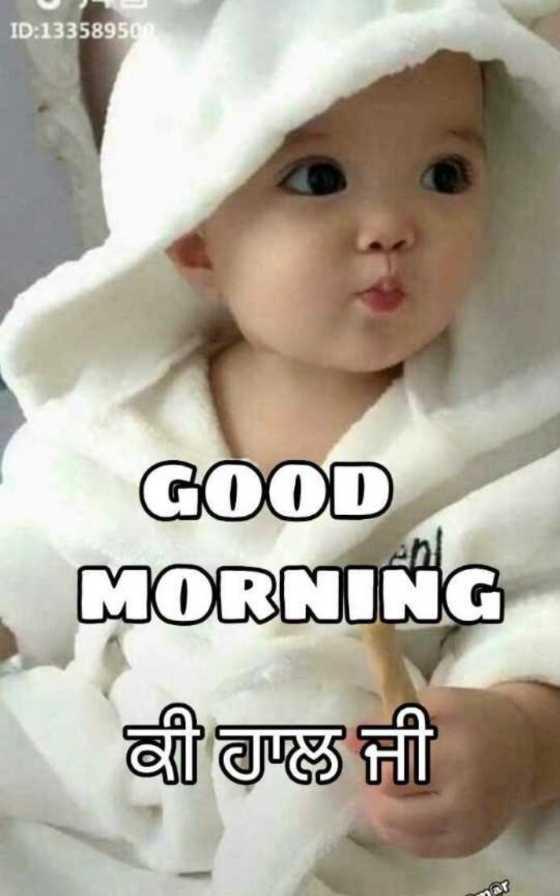 🌅 ਗੁੱਡ ਮੋਰਨਿੰਗ - ID : 1335895gm GOOD MORNING ਕੀ ਹਾਲ ਜੀ - ShareChat