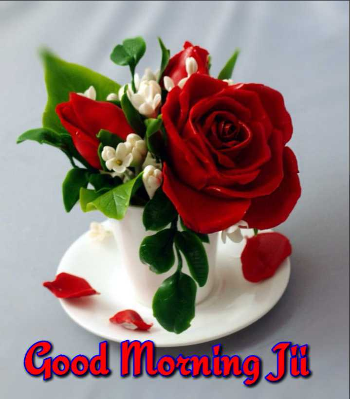 🌅 ਗੁੱਡ ਮੋਰਨਿੰਗ - Good Morning Tu - ShareChat