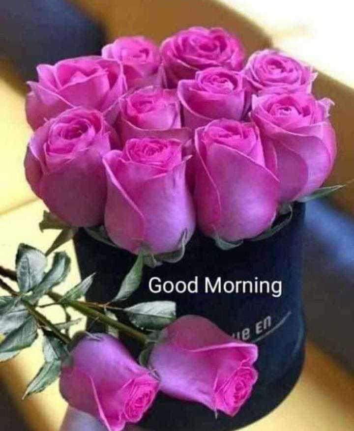 🌅 ਗੁੱਡ ਮੋਰਨਿੰਗ - Good Morning le En - ShareChat