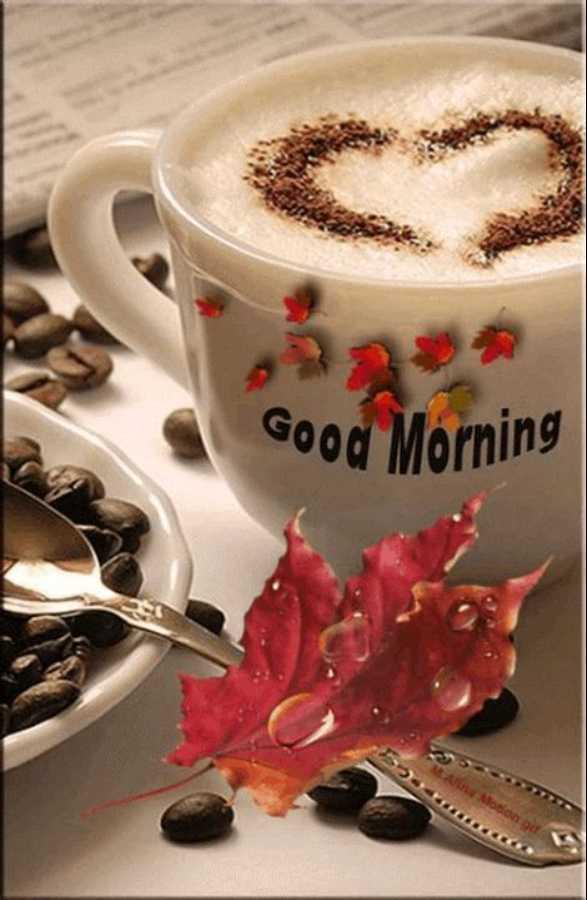 🌅 ਗੁੱਡ ਮੋਰਨਿੰਗ - Good Morning CA Motion git - ShareChat