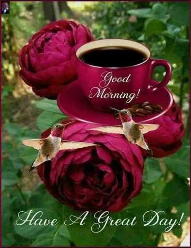 🦁 ਦ ਸੀ ਲਾਯਨ ਐਕਟ - Good Morning ! Have A Great Day ! - ShareChat