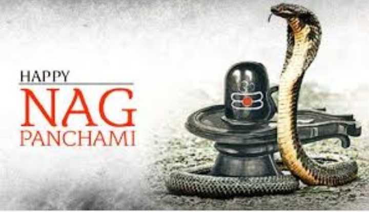 🐍 ਨਾਗ ਪੰਚਮੀ - HAPPY NAG PANCHAMI - ShareChat