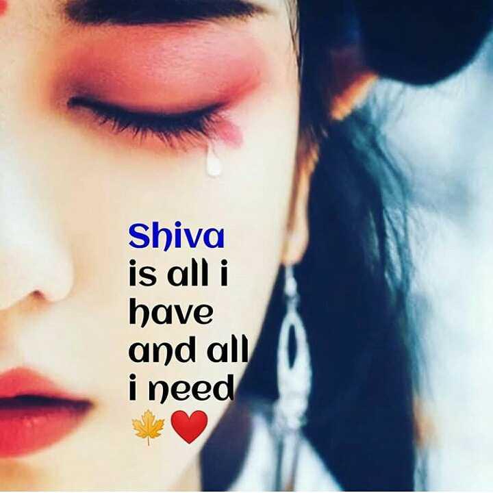 🌸ਮਾਹਾ ਸ਼ਿਵਰਾਤਰੀ ਸ਼ੁਭਕਾਮਨਾਵਾਂ - Shiva is all i have and all i need - ShareChat