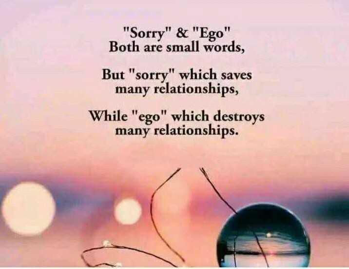🔍 ਮਜ਼ੇਦਾਰ facts 🔖 - Sorry & Ego Both are small words , But sorry which saves many relationships , While ego which destroys many relationships . - ShareChat