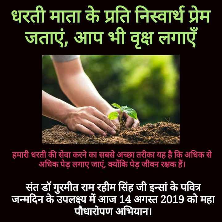 🇮🇳 ਸਵੱਛ-ਤੰਤਰਤਾ - धरती माता के प्रति निस्वार्थ प्रेम जताएं , आप भी वृक्ष लगाएँ हमारी धरती की सेवा करने का सबसे अच्छा तरीका यह है कि अधिक से अधिक पेड़ लगाए जाएं , क्योंकि पेड़ जीवन रक्षक हैं । संत डॉ गुरमीत राम रहीम सिंह जी इन्सां के पवित्र जन्मदिन के उपलक्ष्य में आज 14 अगस्त 2019 को महा पौधारोपण अभियान । - ShareChat