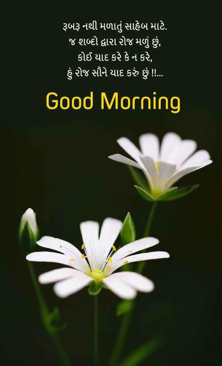 ગુડ મોર્નિંગ - ' રૂબરૂ નથી મળાતું સાહેબ માટે . ' જ શબ્દો દ્વારા રોજ મળું છું , ' કોઈ યાદ કરે કે ન કરે , ' હું રોજ સૌને યાદ કરું છું ! ! . . Good Morning - ShareChat