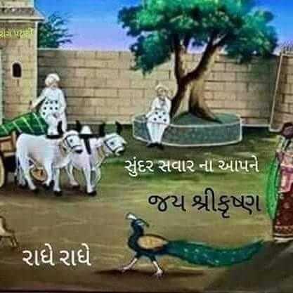 ગુડ મોર્નિંગ - સુંદર સવાર ના આપને જય શ્રીકૃષ્ણ ' રાધે રાધે . - ShareChat