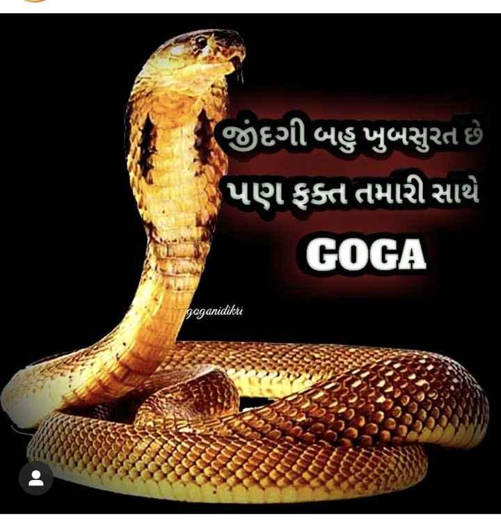 🐍 ગોગા સરકાર - - જીંદગી બહુ ખુબસુરત છે પણ ફક્ત તમારી સાથે GOGA gaganidikri - ShareChat