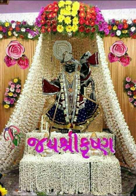 🙏 જય શ્રી કૃષ્ણ - - જોકગ . - ShareChat