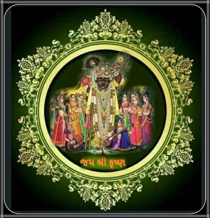 🙏 જય શ્રી કૃષ્ણ - જ્ય શ્રી કૃષ્ણ . - ShareChat