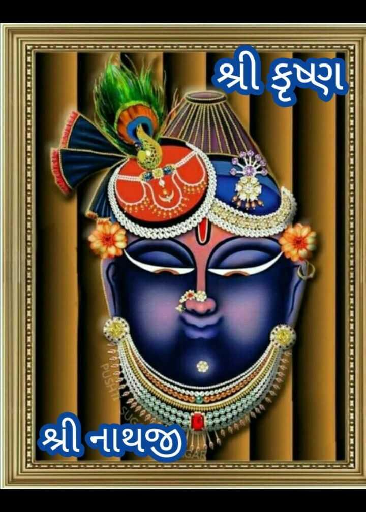 🙏 જય શ્રી કૃષ્ણ - શ્રી કૃષ્ણ PUSRI શ્રી નાથજી - ShareChat
