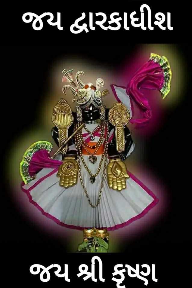 🙏 જય શ્રી કૃષ્ણ - જય દ્વારકાધીશ જ્ય શ્રી કૃષ્ણ - ShareChat