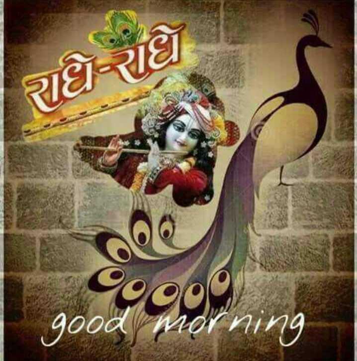 🙏 જય શ્રી કૃષ્ણ - રાધે રાધે 9000 good morning - ShareChat