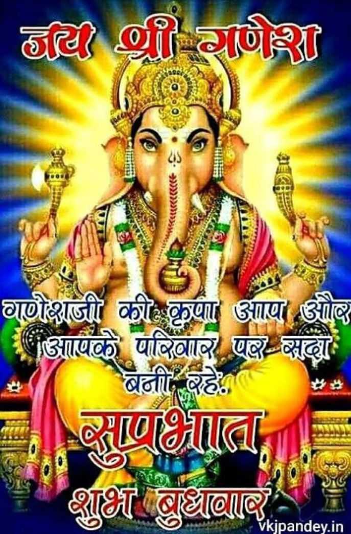🐀 જય શ્રી ગણેશ - नर श्री गणेश H गणेशजी की कृपा आपा और आपके परिवार पर सदा बनी रहे । साणभाता शाभ बअनार Vkjpandey . in - ShareChat