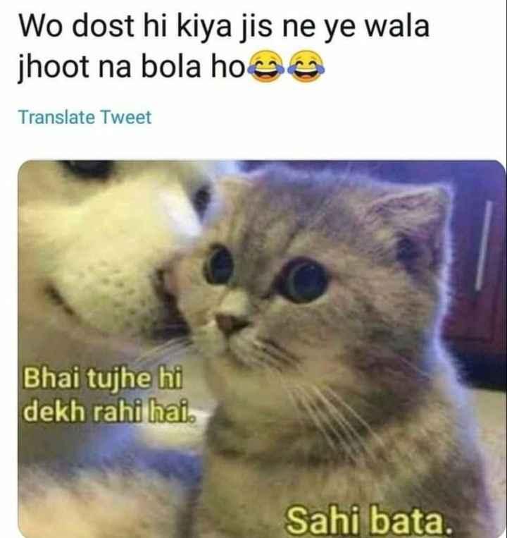 🤣 રમુજી ફોટો - Wo dost hi kiya jis ne ye wala jhoot na bola hooa Translate Tweet Bhai tujhe hi dekh rahi hai . Sahi bata . - ShareChat