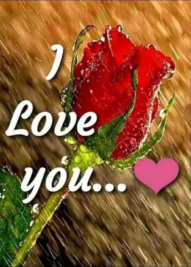 💝 લવ કોટ્સ - Love - you . . . - ShareChat