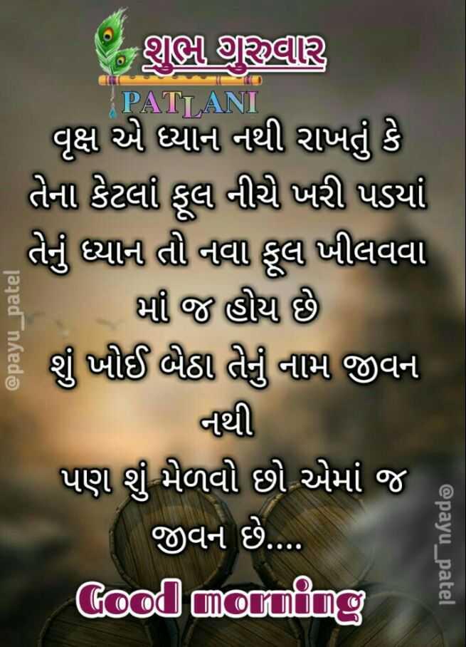 💐 શુભ ગુરૂવાર - PATLANI | વૃક્ષ એ ધ્યાન નથી રાખતું કે તેના કેટલા ફૂલા નીચે ખરી પડયાં તેનું ધ્યાના તી નવા ફૂલો ખીલવવા કૈ ભી જ હોય છે # શું પીઈ ભલા તેનું નામ જીવન નથી પણ શું મેળવી છો એમાં જ જીવન છે . . . . Good morning @ payu _ patel - ShareChat