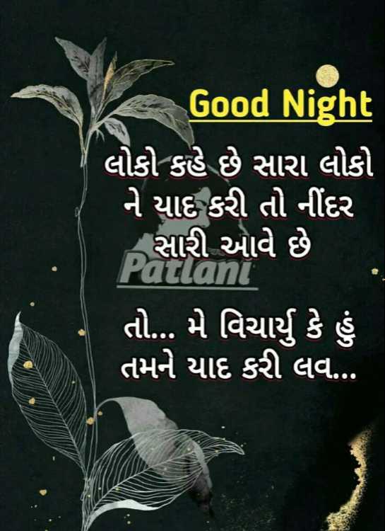 🌙 શુભરાત્રી - Good Night લોકો કહે છે સારા લોકો ' ને યાદ કરી તો નીંદર ' સારી આવે છે Patlani ' તો . . . મે વિચાર્યું કે હું તમને યાદ કરી લવ . . . - ShareChat
