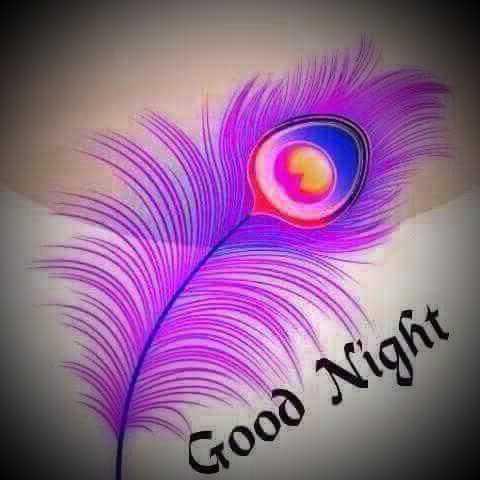 💐 શુભ શનિવાર - Good Night - ShareChat