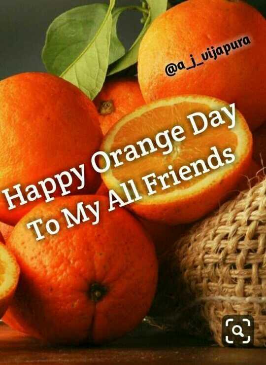 🍊 શેરચેટ નારંગી દિવસ - @ a _ j _ vijapura Happy Orange Day To My All Friends - ShareChat