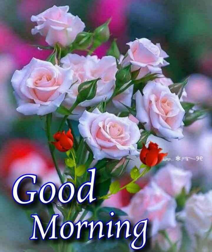 🙏 શ્રદ્ધાંજલિ - iro . * 9e Good Morning - ShareChat