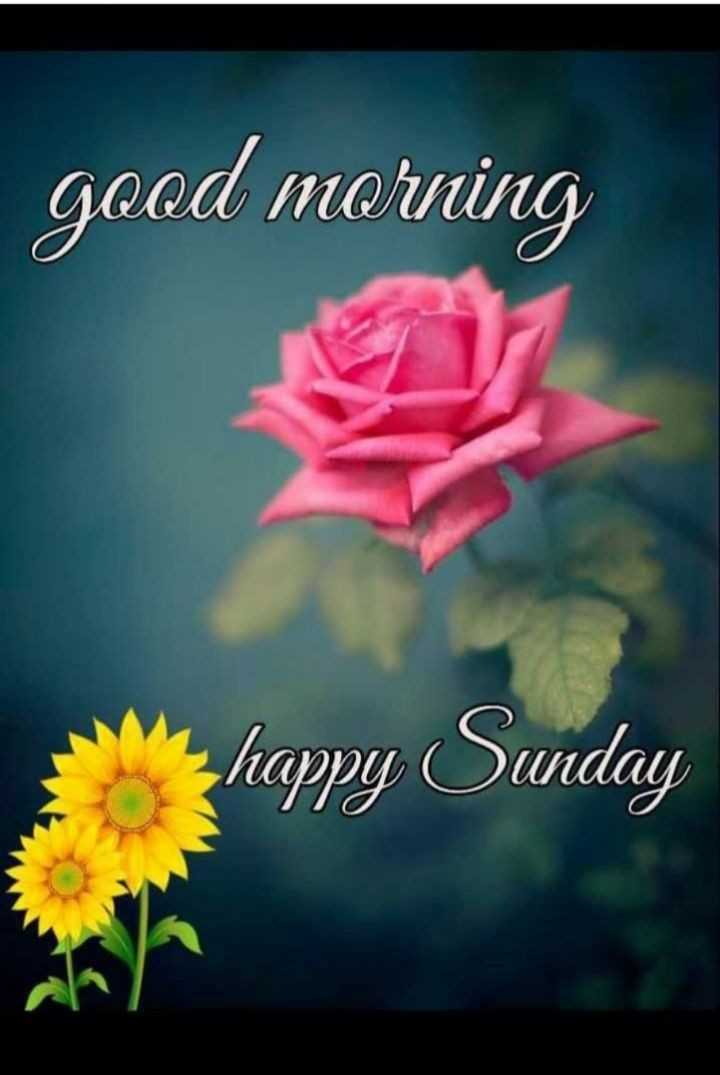 🙏 શ્રદ્ધાંજલિ - good morning happy Sunday - ShareChat
