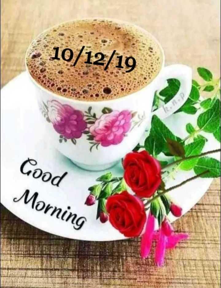🌅 સુપ્રભાત - - 10 / 12 / 19 Good Morning - ShareChat