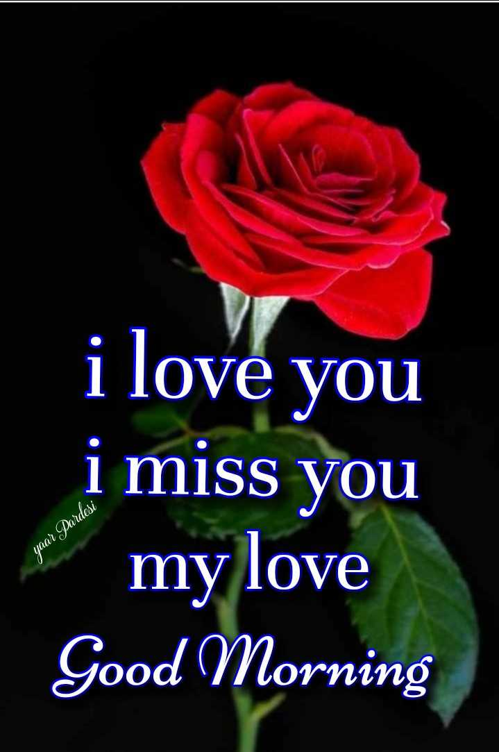 🌅 સુપ્રભાત - i love you i miss you my love Good Morning yaar Pardesi - ShareChat