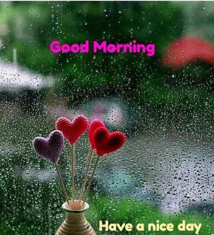 🌅 સુપ્રભાત - Good Morning Have a nice day - ShareChat