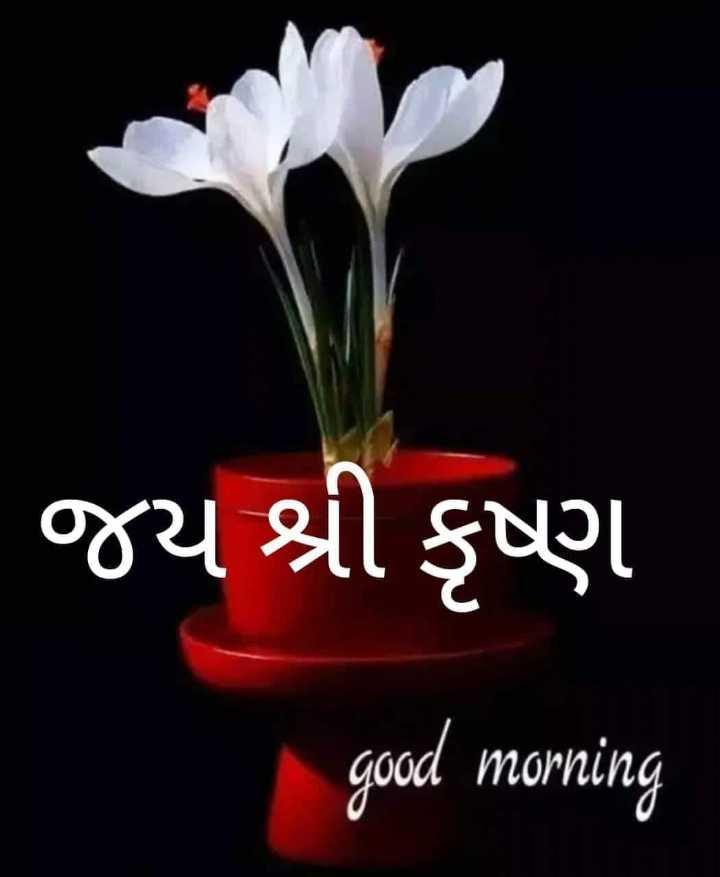🌅 સુપ્રભાત - જય શ્રી કૃષ્ણ good morning - ShareChat