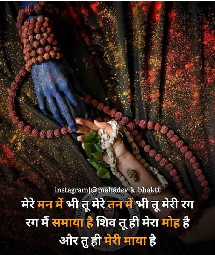🎴 સ્ટેટ્સ ફોટો - instagram @ mahadev _ k _ bhaktt मेरे मन में भी तू मेरे तन में भी तू मेरी रग रग मैं समाया है शिव तू ही मेरा मोह है और तु ही मेरी माया है - ShareChat