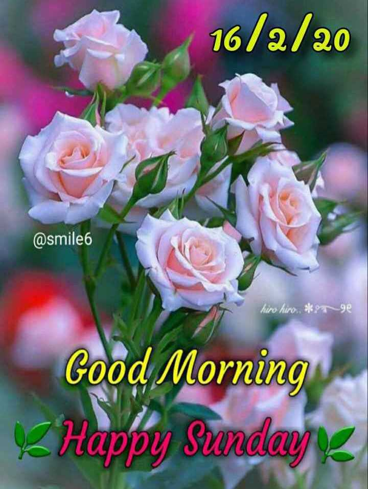 💐 હેપી રવિવાર - 16 / 2 / 20 @ smile hiro hiro , * 979e Good Morning V Happy Sundayı - ShareChat