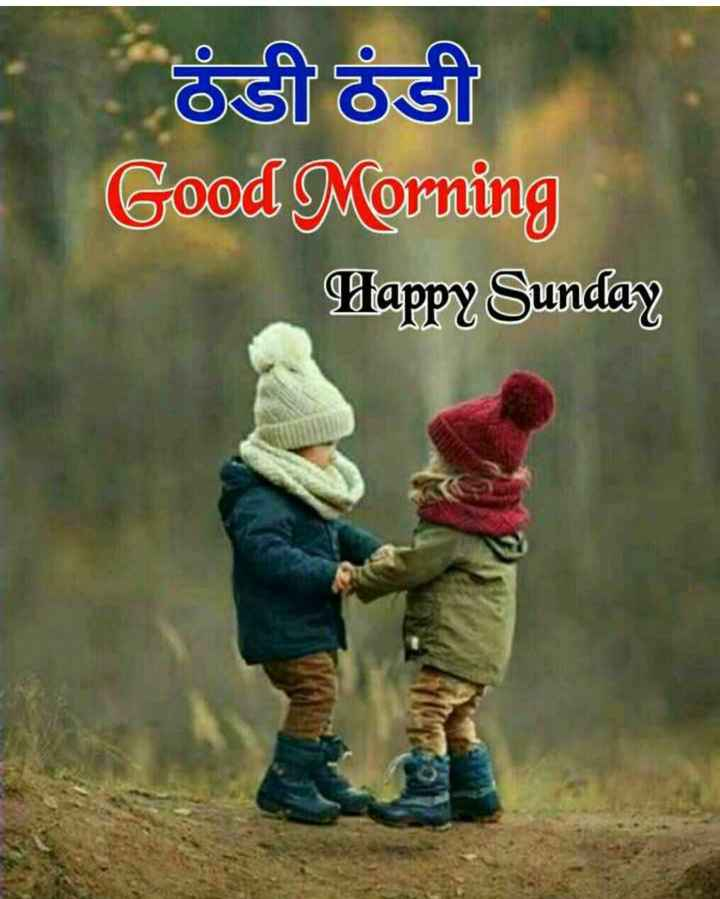 💐 હેપી રવિવાર - ठंडी ठंडी Good Morning Dappy Sunday - ShareChat