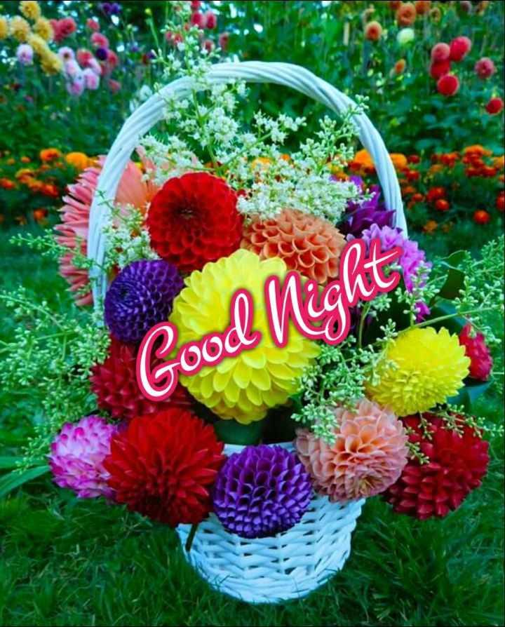 🌛ଶୁଭ ରାତ୍ରି - Good Night - ShareChat