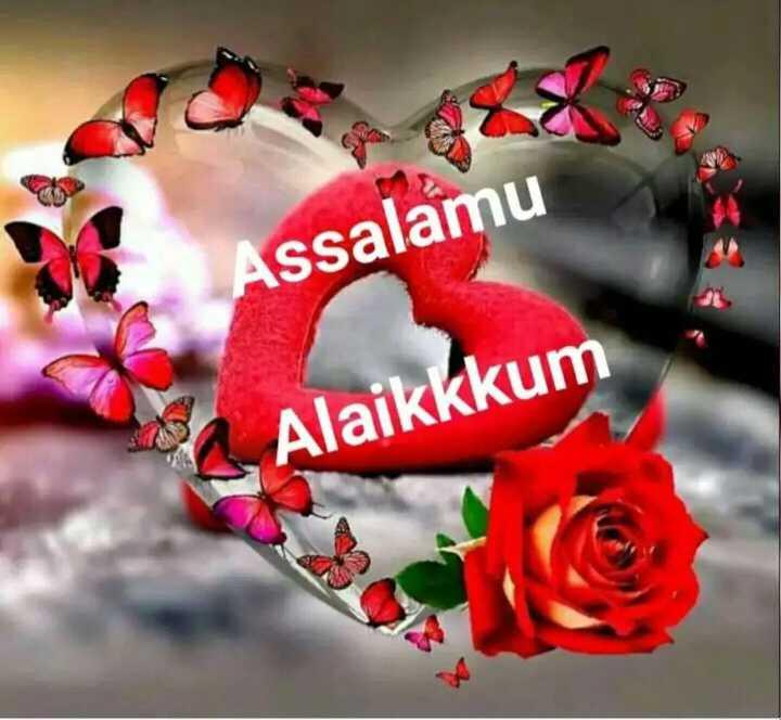 🕍 அல்லாவின் அருட்கொடை - Assalamu Alaikkkum - ShareChat