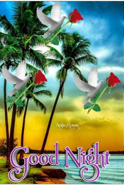 🌙இரவு வணக்கம் - Aggriq Kumar Goose - ShareChat